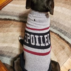 Spoiled dog sweater